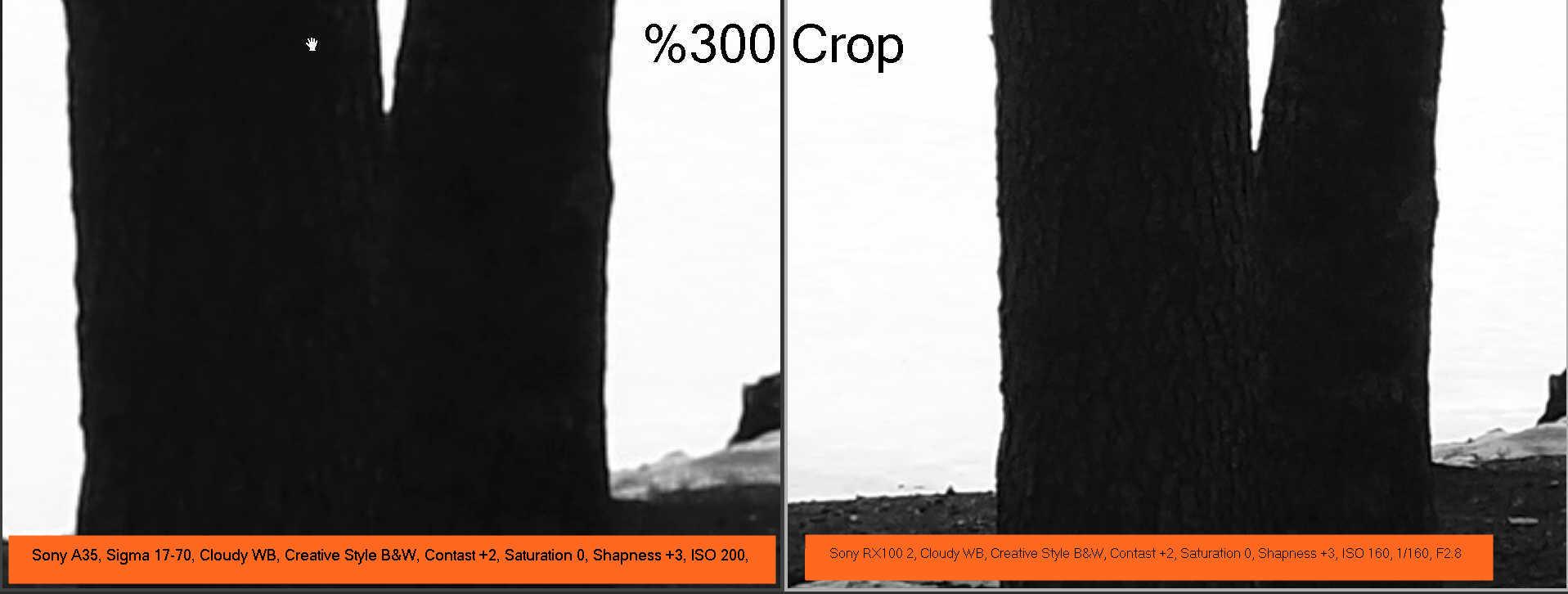 Sony RX100 2 dynamic range